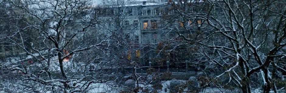 Lambrecht Law Office tijdens BRAFA in winterse ambiance -